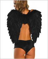 Roma® Black Feather Wings RC-1361B