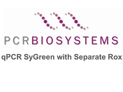 PB20.14-20 PCR Biosystems qPCRBio SyGreen Mix with Separate ROX, SyGreen real-time PCR, [2000x20ul rxns] [20x1ml]
