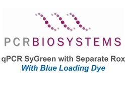 PB20.17-01 PCR Biosystems qPCRBio SyGreen Mix with Blue Loading and Separate ROX, SyGreen real-time PCR, [100x20ul rxns] [1x1ml]