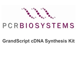 PB30.11-10 PCR Biosystems qPCRBio GrandScript cDNA Synthesis Kit, cDNA generation for qPCR, 100 reactions, [0.1ml mix] & [0.1ml RTase]