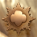 Bronze Award Pin