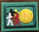 Sign of the World - RETIRED Girl Scout Junior Award