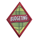 Cadette - Budgeting Badge