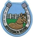 Horseback Riding Fun Patch