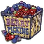 Berry Picking (box) Sew-on Fun Patch
