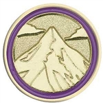 Junior Journey Summit Award Pin
