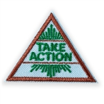 Brownie Take Action Journey Award