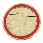 Cadette Journey Summit Award Pin