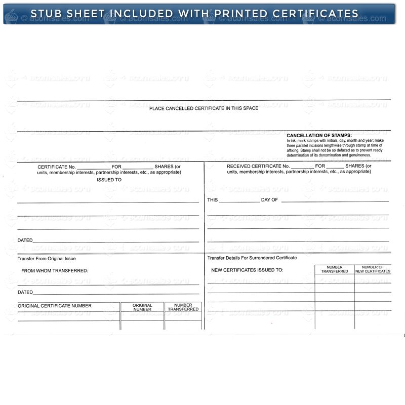 Blue Short Form Llc Certificate Corporate Supplies