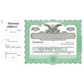 Goes 390 No Par Value Stock Certificate