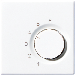 Room thermostat (make/break contact) White