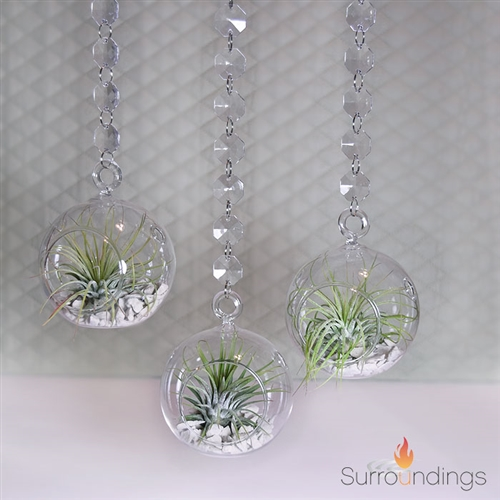 Air Plant in Bubble Vase with Acrylic Garland