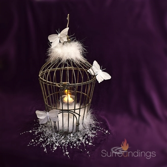 Butterfly Birdcage Centerpiece Kit