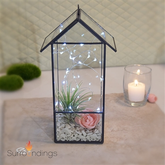 Lighted House Terrarium Centerpiece