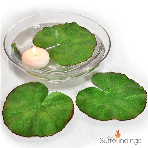 Floating Lotus Leaf