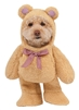 Rubies Costume Company Walking Teddy Bear Pet Suit