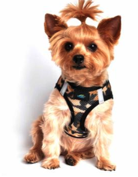 American River Choke Free Dog Harness Camouflage Collection - Brown Camo