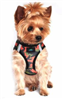 American River Choke Free Dog Harness Camouflage Collection - Orange Camo
