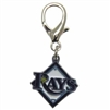 Tampa Bay Rays Logo Dog Collar Charm