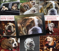 MMCbully notecards