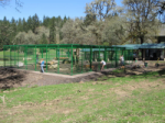 42'W x 62'D x 10'H Powder Coated Exotic Animal Enclosure