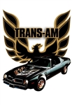 1976 Pontiac Firebird Trans Am Special Edition 50th Anniversary 3D Sign
