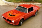 1973 - Early 1978 Trans Am Hood Bird and Decals - Kit