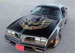 1976 - 1978 Trans Am Special Edition German Style Decal Kit, Roll Pinstripes