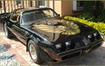 1978 - 1980 Trans Am SE Special Edition Decal Kit, Roll Pinstripes