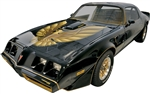 1978 - 1980 Trans Am SE Special Edition Ultimate Decal kit