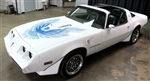 1981 Trans Am Decal Kit Two Color and for Non Turbo Engines