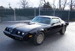 1981 Trans Am - Special Edition Decal and Stripe Kit