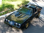 1981 Trans Am Turbo Special Edition Decal Kit