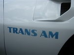 1973 - 1978 Trans Am Fender Decal, Die-Cut