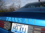 1973 - 1978 Trans Am Rear Spoiler Decal, Die Cut