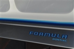 "1979 - 1981 "" Formula / Pontiac "" Front Bumper Decal Name"