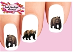 Grizzly Bears Assorted Set of 20 Waterslide Nail Decals