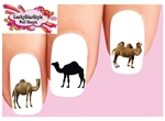Camel Assorted Set of 20 Waterslide Nail Decals