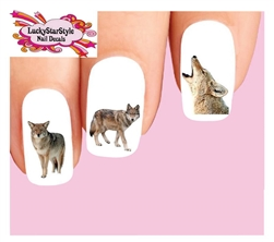 Coyote Assorted Waterslide Nail Decals