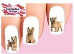 Cairn Terrier Wheaten Assorted Set of 20 Waterslide Nail Decals