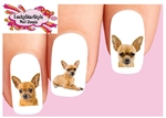 Chihuahua Assorted Set of 20 Waterslide Nail Decals