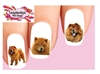 Chow Chow Red Assorted Set of 20 Waterslide Nail Decals