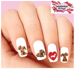 Dachshund Doxie Assorted Set of 20 Waterslide Nail Decals