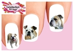 English Bulldog Assorted Set of 20 Waterslide Nail Decals