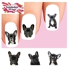 Black French Bulldog Set of 20 Waterslide Nail Decals