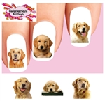 Golden Retriever Assorted Set of 20 Waterslide Nail Decals