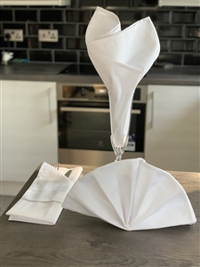 Large White Table Napkins