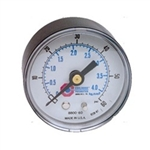 "Coilhose 8800-160-DL, 2"" Dial Gauge with 1/4"" Back Mount (0-160 PSI)"