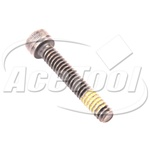 Paslode Part 403816  Screw/Shc (Ct) 10 Pk