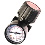 Senco PC0656  1/4-inch FPT Mini Regulator with Gauge